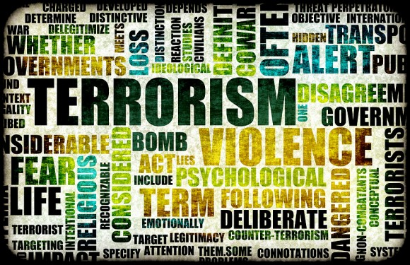 Insurance market evolving to handle terrorism risks: Marsh